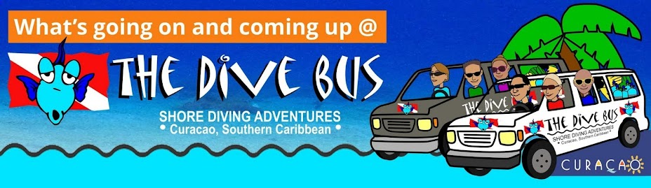 What's going on and coming up at The Dive Bus, Curacao