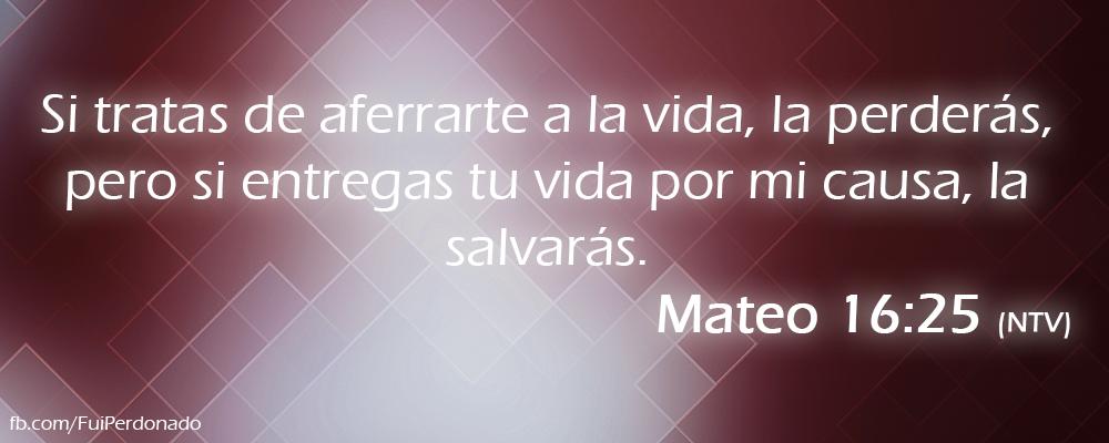 Mateo 16:25