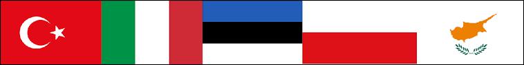Partnerkoolide riigilipud