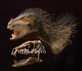 Pegomastax africanus atau si Rahang Tebal dari Afrika