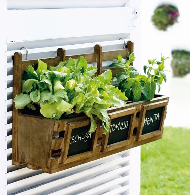 Cocina segura c mo crear un huerto en casa sin riesgos - Como hacer un huerto en el jardin ...