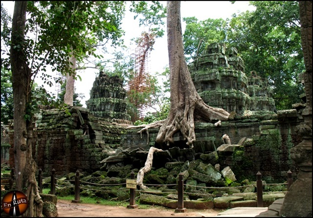 Ta-Prohm-Templos-de-Angkor_10
