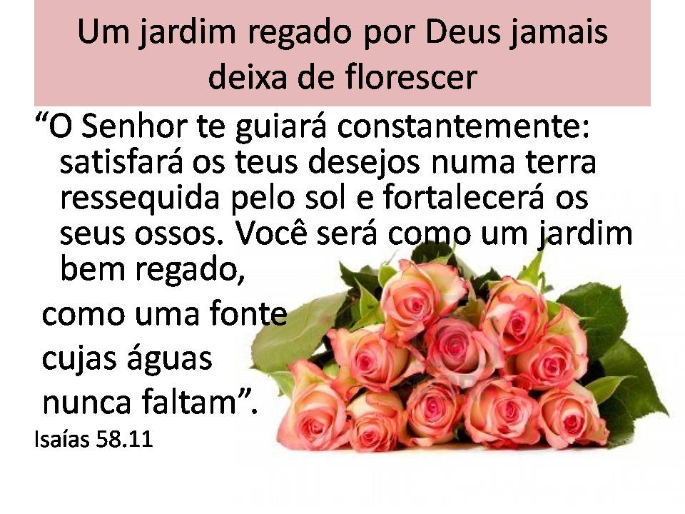 rosas no jardim de deus:Blog da Sinodal de SAFs – Noroeste da Bahia: Aniversário da SAF 1ª