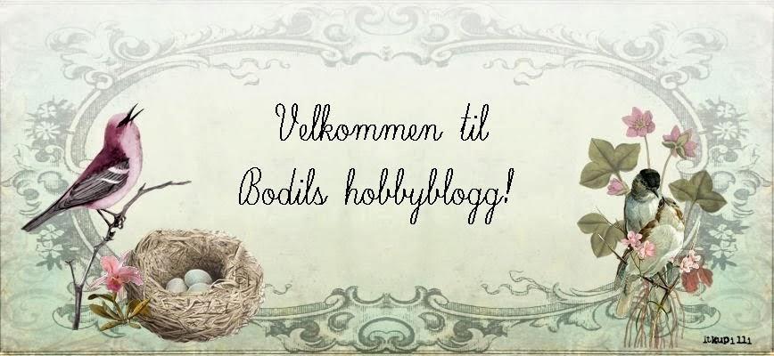 Bodils hobbyblogg