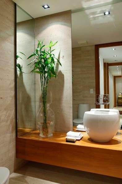 Planta En El Baño Feng Shui ~ Dikidu.com