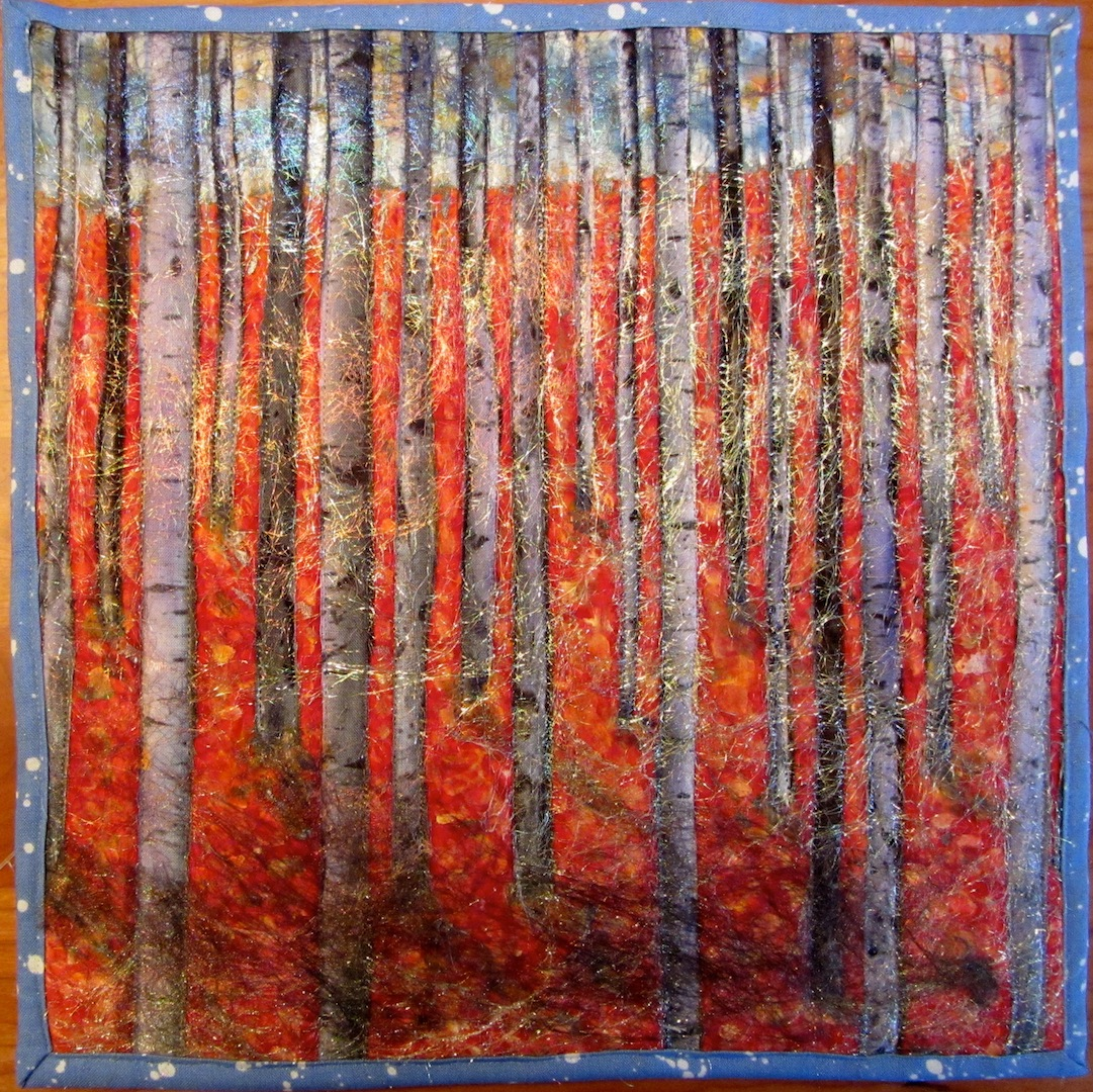 Birch forest o