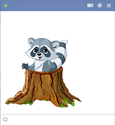 Raccoon icon for Facebook