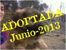 Lola adoptada
