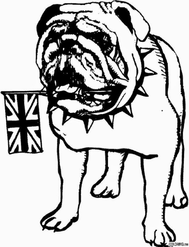 Usmc Bulldog Coloring Pages Pictures to Pin on Pinterest  PinsDaddy