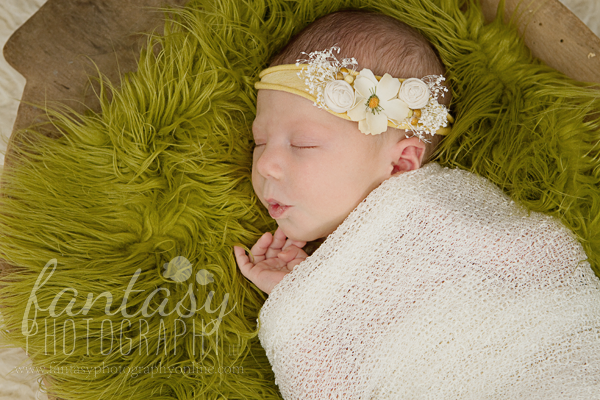 newborn photographers in winston salem nc | baby photographers winston salem