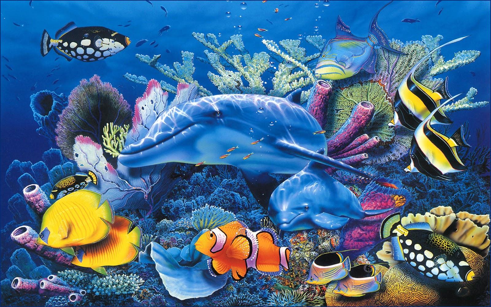 Imagenes de fondo del mar - Fotos fondo del mar ...