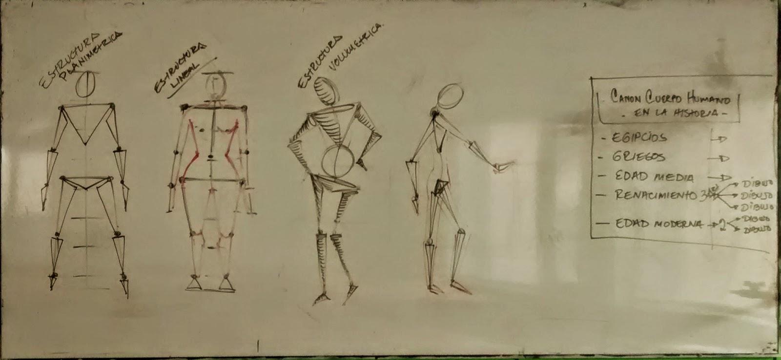 Estructura Lineal   Dibujo del Cuerpo Humano