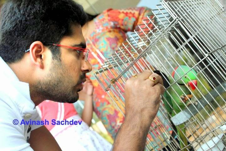 Avinash Sachdev HD wallpapers Free Download
