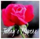 http://flowersfromtoday.blogspot.com/