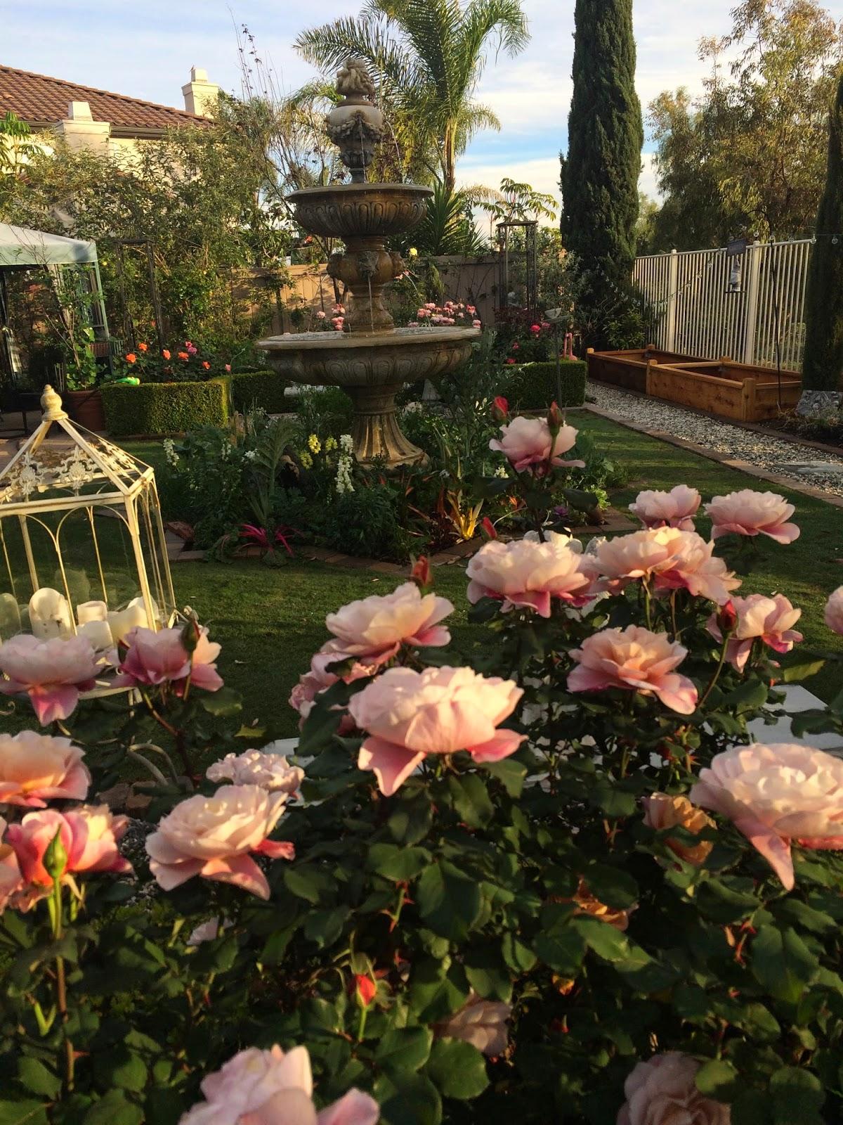 La Bella Vita... Beautiful Living , Food, Gardening: Nel Giardino ...