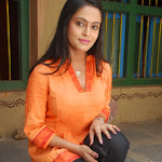 Radhika Telugu Actress Photo Stills