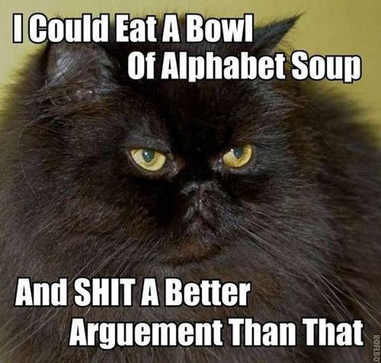 LOL cat argument 61646726486 dora got old, memes and sitcoms, gaga cereal, yoda speak & more,Busier Than A Meme