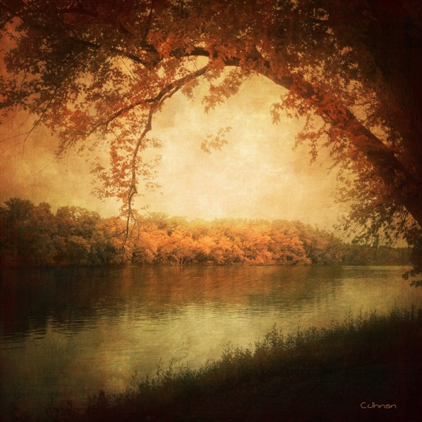 Fall is Upon Us © Cyndy Johnson