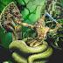 Con rồng trong văn hóa của người Khmer