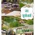 Yay or Nay: Natural Swimming Pools