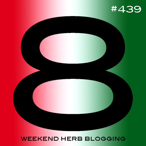 Weekend Herb Blogging #439 Hosting