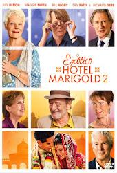 Baixar Filme O Exótico Hotel Marigold 2 (Dual Audio)