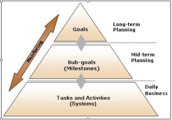 how to achieve organisation goal