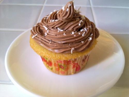 horno-solar-cupcakes-2