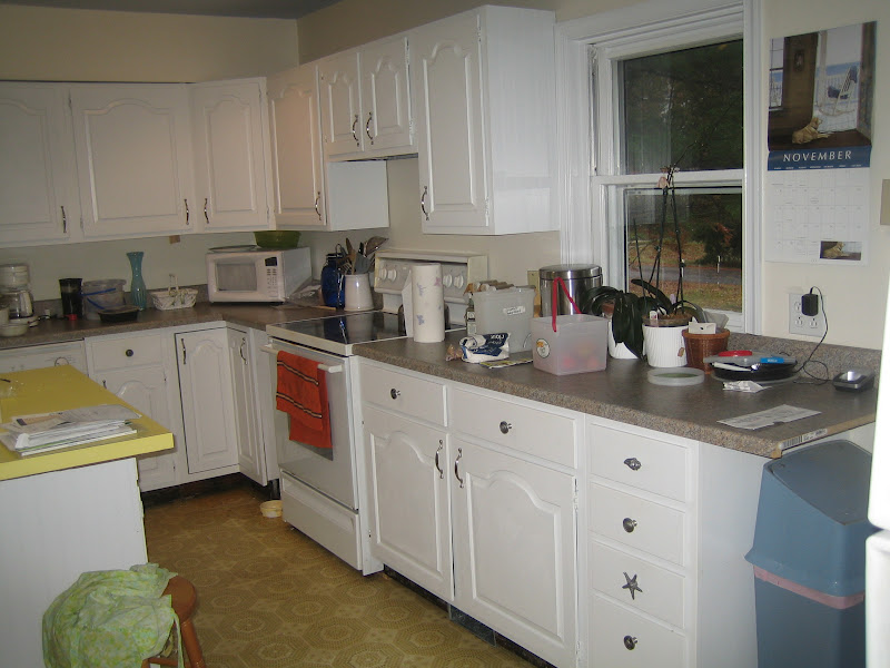 for the kitchen these kitchen cabinets are laminated with