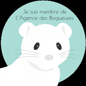 L' Agence des Blogueuses