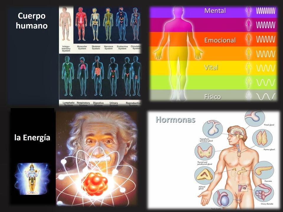 somos energía, la causa de la enfermedad
