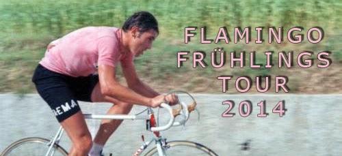 http://fmgx.blogspot.de/2014/04/flamingo-fruhlingstour-hgw-groningen.html