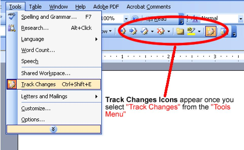 how to use word track changes