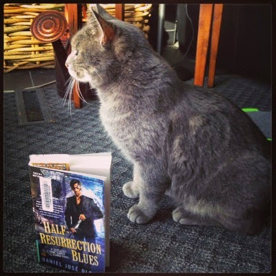 A grey cat, Ollie, stares out a French window. Beside him is a paperback copy of Half-Resurrection Blues. Its cover features a Puerto Rican man in a black suit. He draws a sword as he walks away from a triumphal arch.