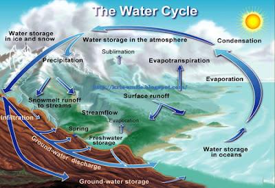 Kondisi Lingkungan Laut