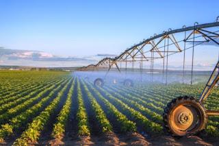 Ekonomist Önder Tavukçuoğlu: Acil tarım politikası oluşturulmalı