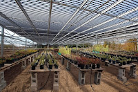 Greenhouse as well as Generating Electricity from Solar