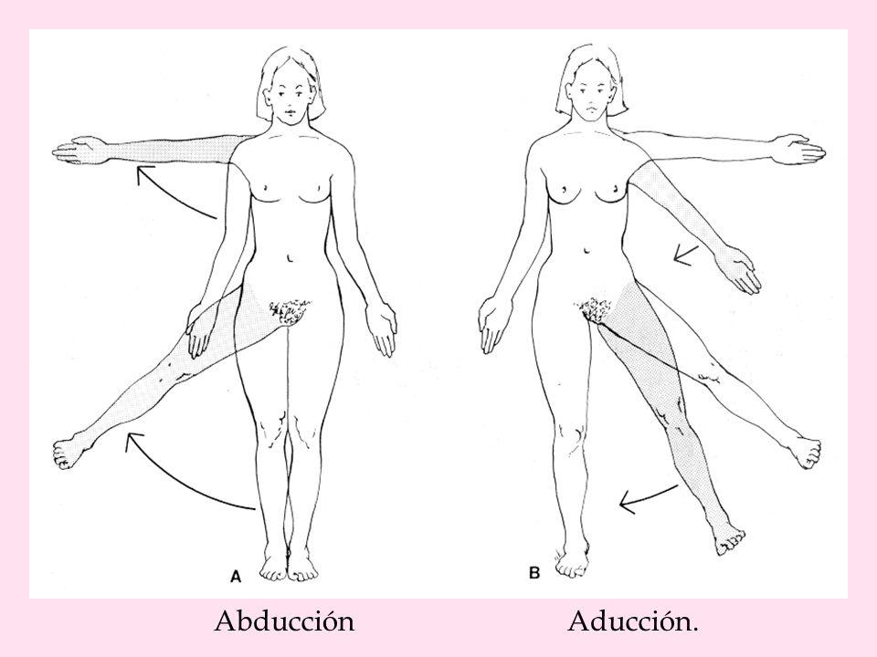 La otra fisioterapia: Abducción-aducción, fisioterapia para iluminados