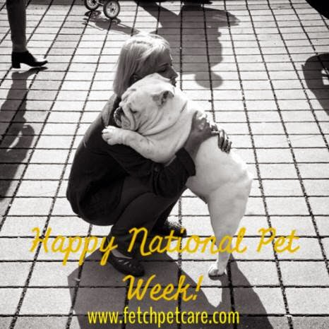 National Pet Week by Fetch Pet Care