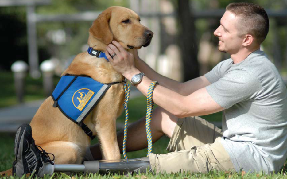 Can Have A Dog Help With Learning Disabilities