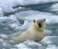 http://www.jltarazona.com/p/hay-cambio-climatico-evidencias.html