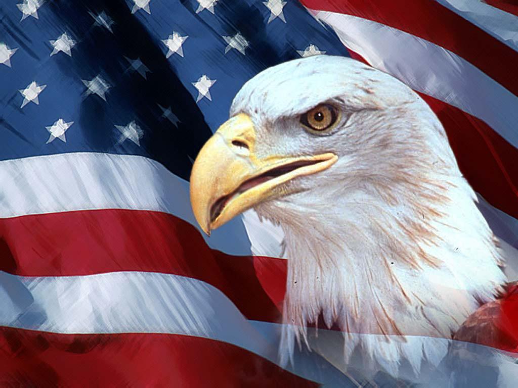 http://1.bp.blogspot.com/-glCsfcXmsQU/TmauuNRuELI/AAAAAAAABn0/mHd-JvABbG0/s1600/american-eagle.jpg#american%20eagle%201024x768