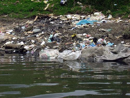 estado recurso natural ambiente bogota d c: