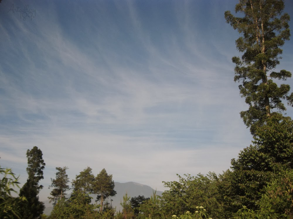 The Blue Sky of Cianjur