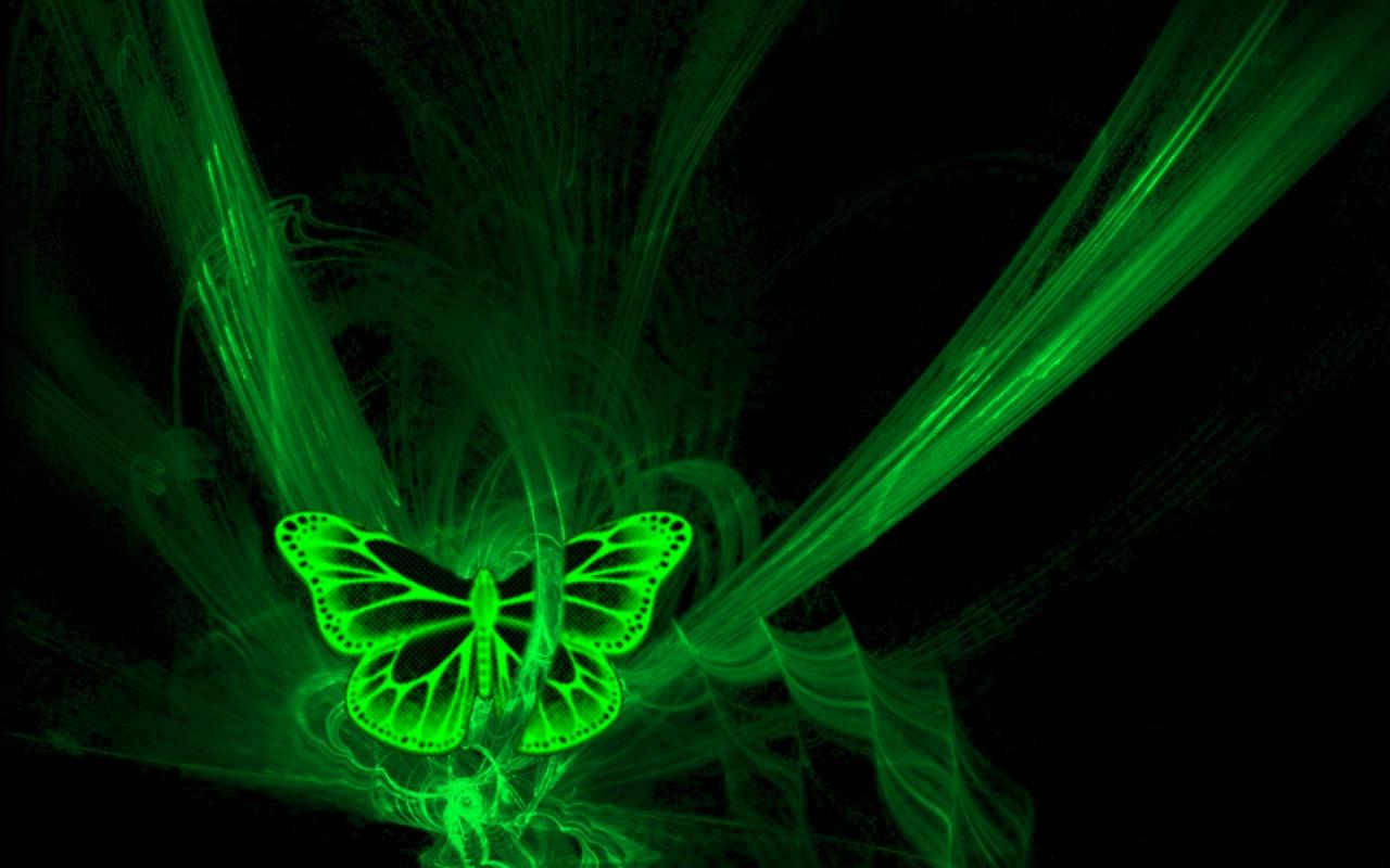 Popular Wallpaper Name Kiran - green_butterfly-1280x800  Gallery_511434.jpg