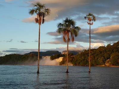 parque nacional canaima,lenka Skalosova,tepuyes, venezuela, vuelta al mundo, asun y ricardo, round the world, informacion viajes, consejos, fotos, guia, diario, excursiones