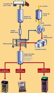 Circuito Leche Pasteurizada