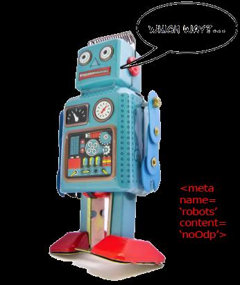 Robot Meta Tag