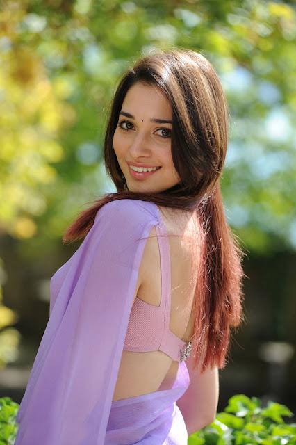 all stars photo site tamanna bhatia in purple backless saree