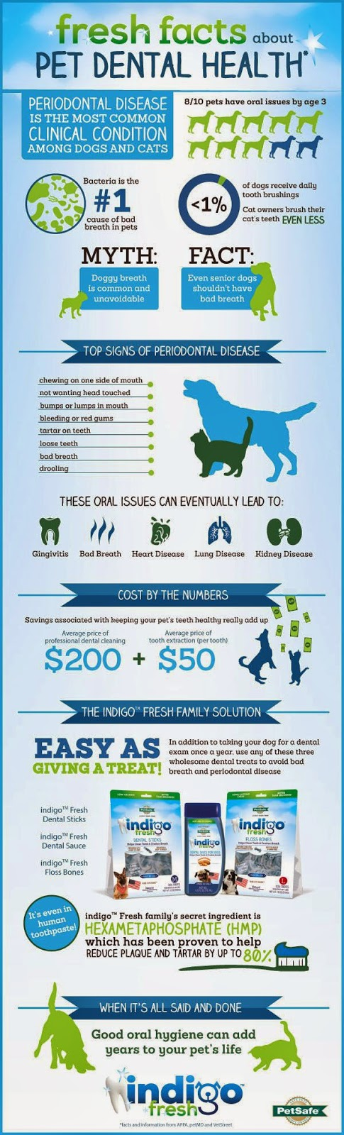PetSafe Pet Dental Health Month infographic